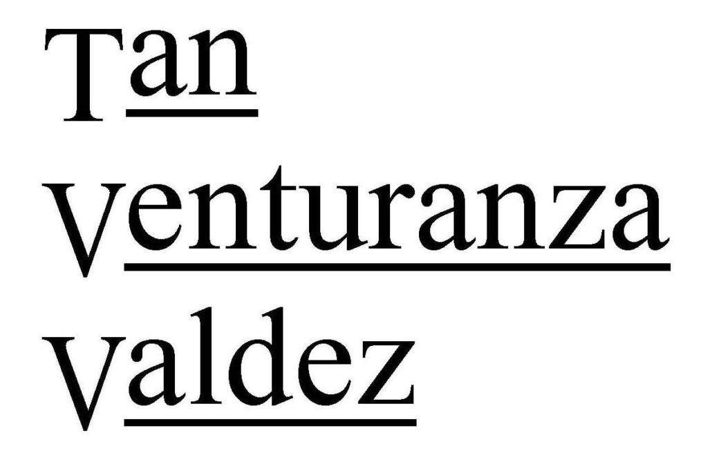 Tan Venturanza Valdez